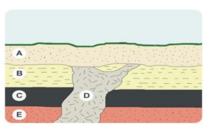 To oldest layers youngest rock What are