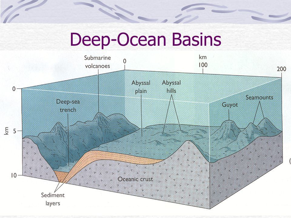 Describe the structure and evolution of the ocean basin for Ocean floor features definition