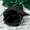 BlackRose13